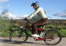 Axcess Electric Bikes: