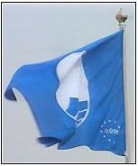 Three Blue Flags For The Island