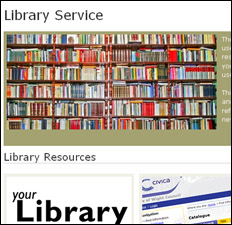 Library Service Could Be Reduced To One Library: Unconfirmed