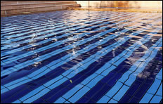 Swimming Sessions for Families With Disabled Children