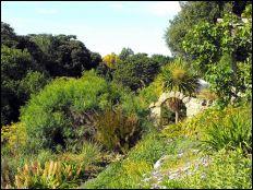 Botanic Garden: