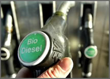 Wight Made Bio Diesel: Cooking Oil Needed