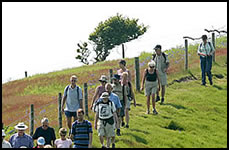 IW Walking Festival: Wednesday Walks
