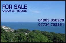 View For Sale (And House Thrown In)